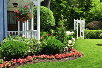 Landscaping with annual flowers in Lenawee.